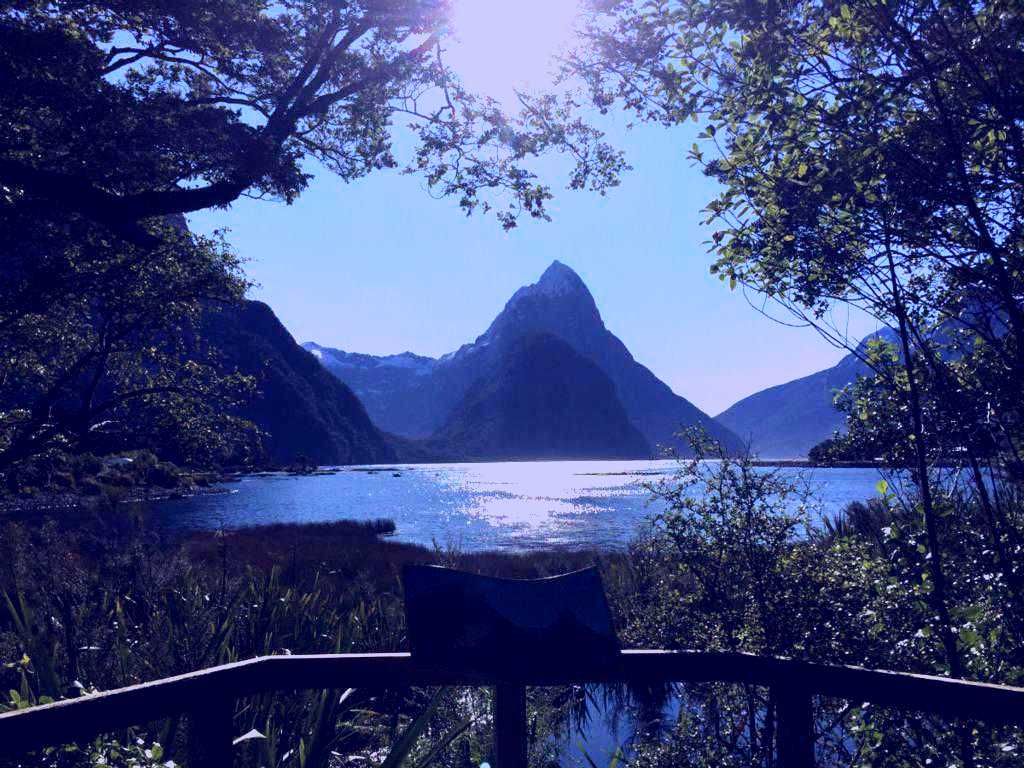 SubjectCoach | Milford Sound Flightseeing from Franz Josef