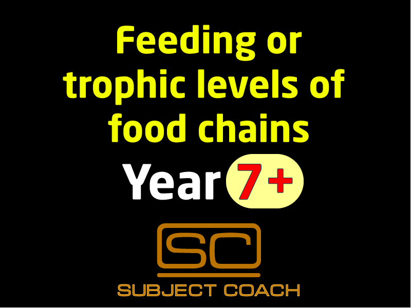 SubjectCoach | Trophic levels of food chains