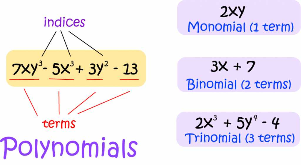 Definition of Binomial | SubjectCoach